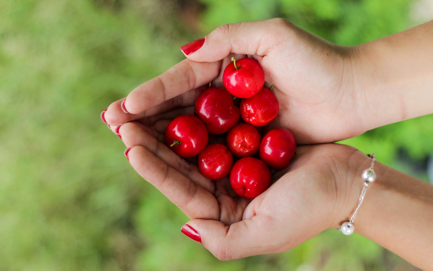 Hands filled with cherries wallpaper 1440x900