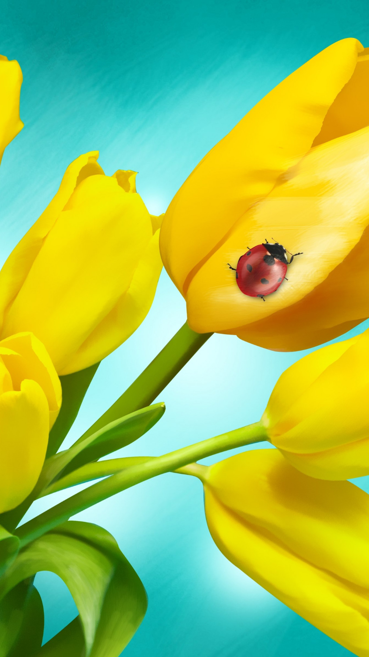 Ladybird on yellow tulips wallpaper 1242x2208