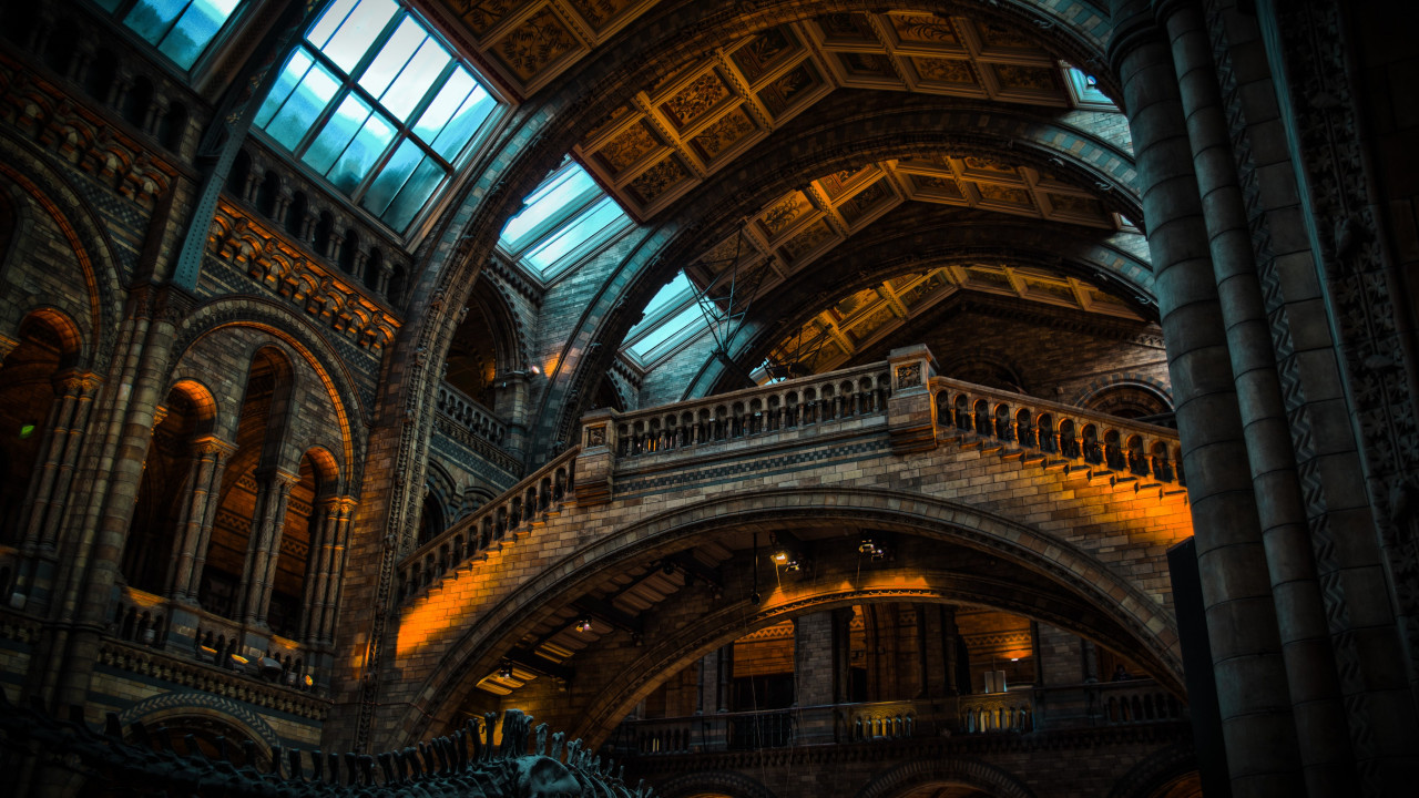 Inside of Natural History Museum from London | 1280x720 wallpaper