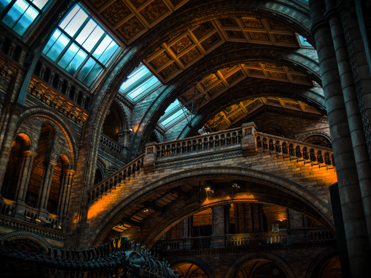 Inside of Natural History Museum from London | 1280x960 wallpaper