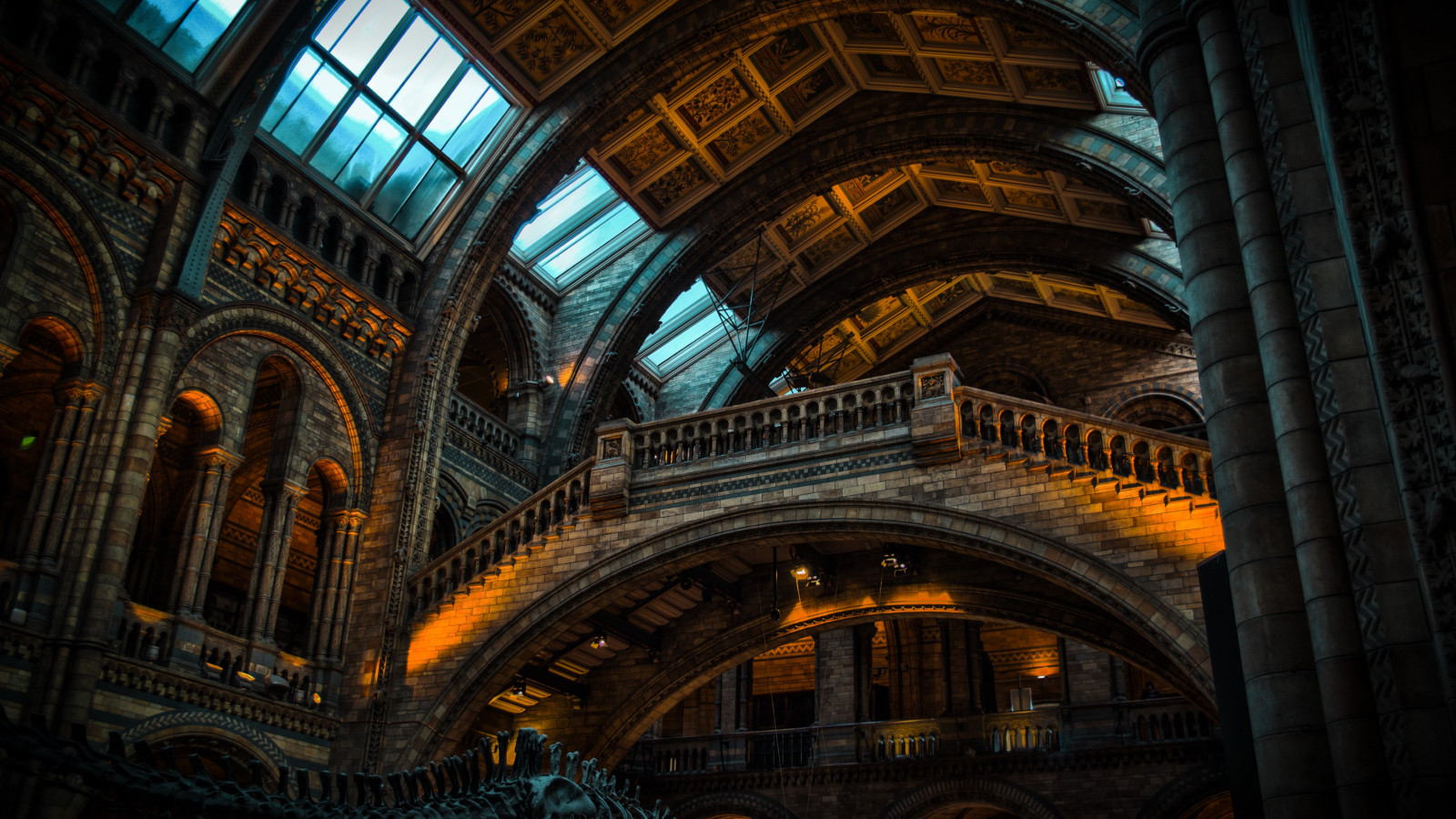 Inside of Natural History Museum from London | 1600x900 wallpaper