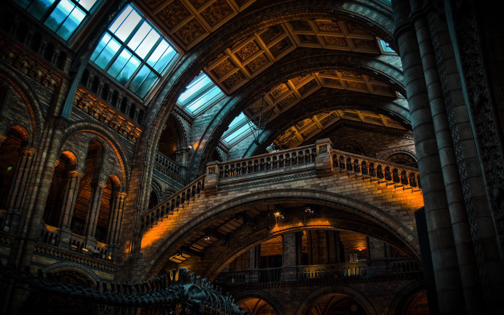 Inside of Natural History Museum from London | 1680x1050 wallpaper