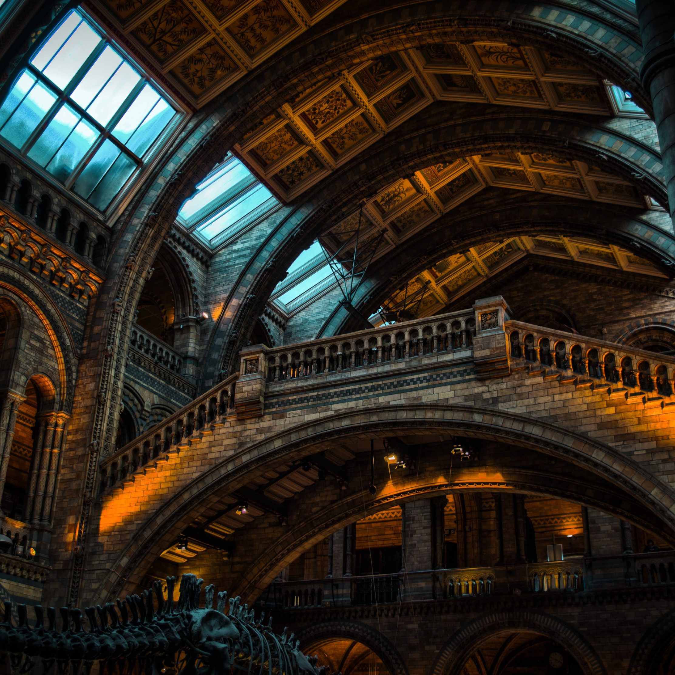 Inside of Natural History Museum from London | 2224x2224 wallpaper