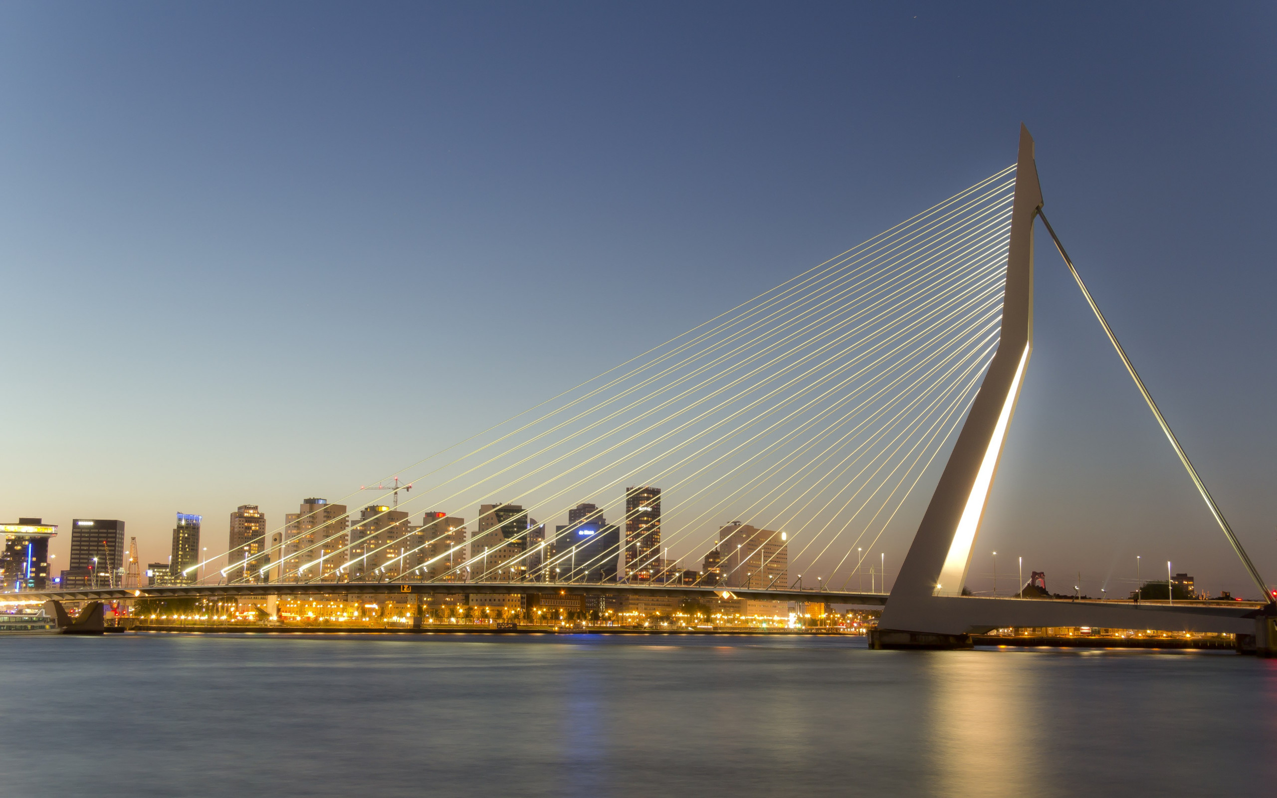 Erasmus bridge wallpaper 2560x1600