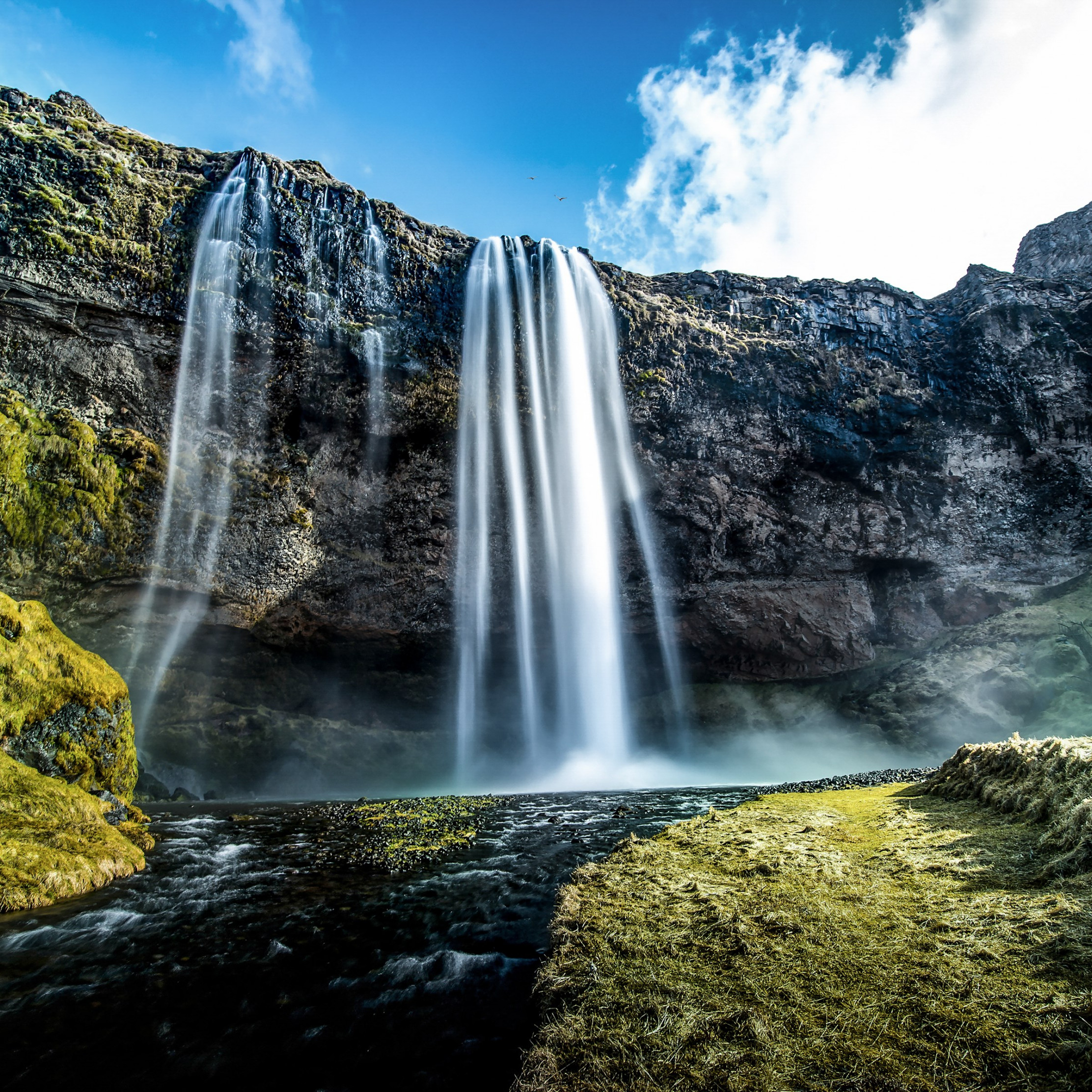 Seljalandsfoss waterfall in Iceland | 2224x2224 wallpaper