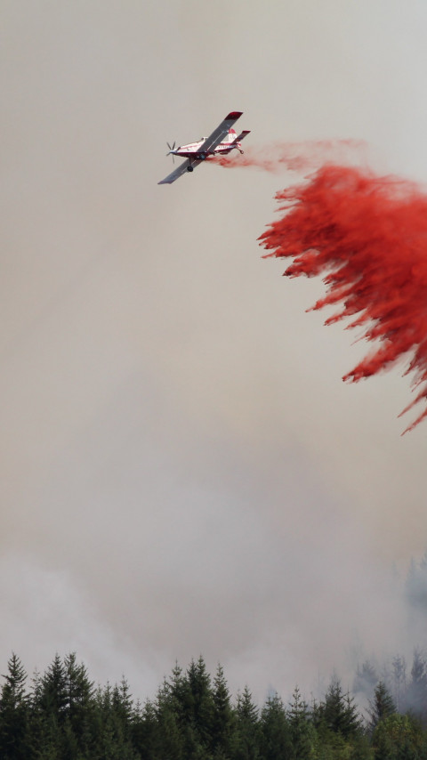 Airplane for fire fighting forest wallpaper 480x854