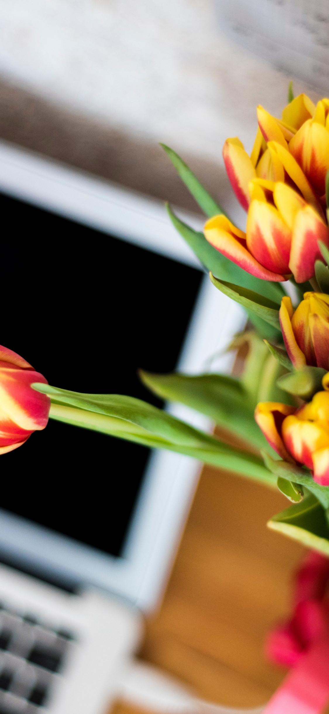 Laptop and tulips bouquet wallpaper 1125x2436