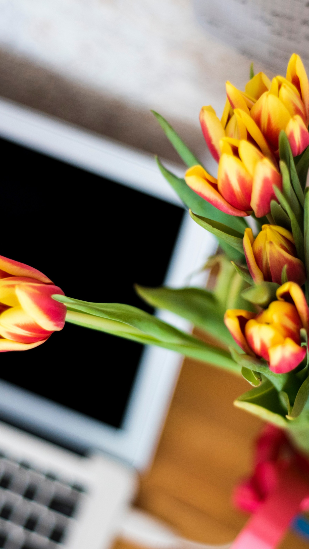 Laptop and tulips bouquet wallpaper 1242x2208
