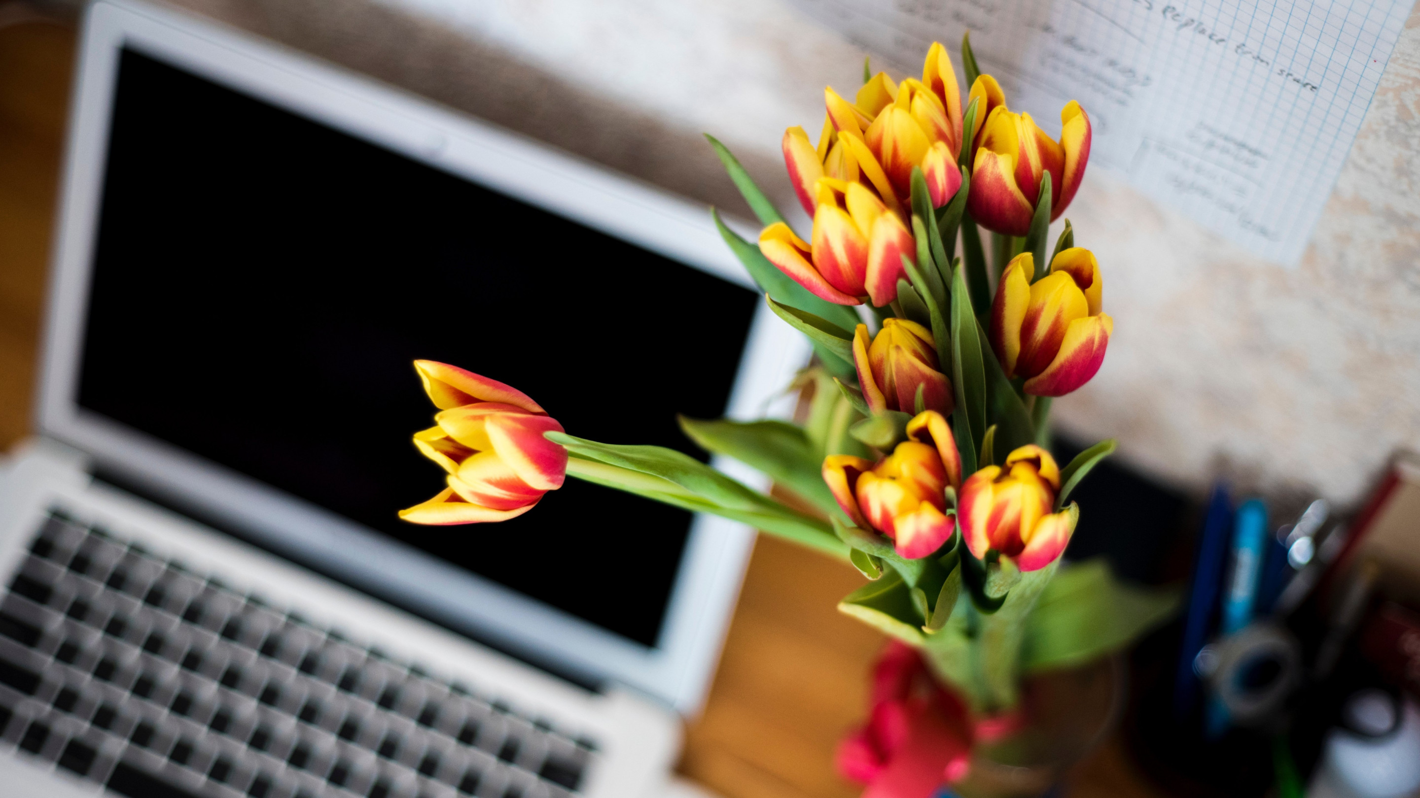 Laptop and tulips bouquet wallpaper 2880x1620