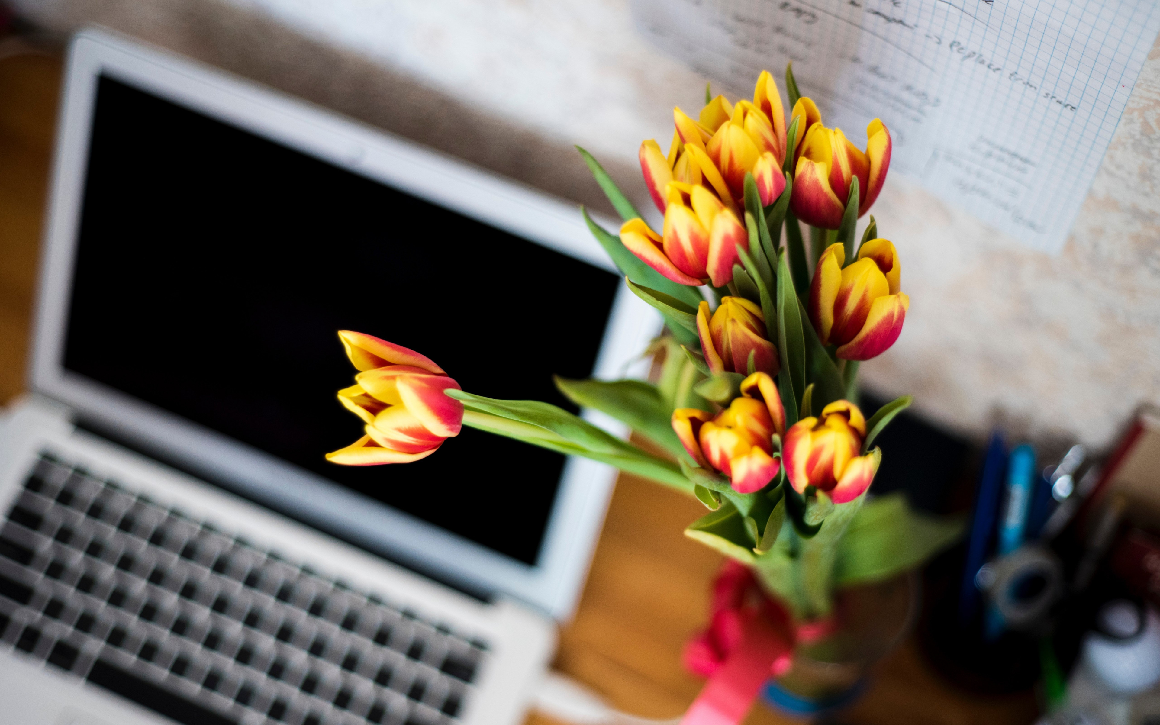 Laptop and tulips bouquet wallpaper 3840x2400