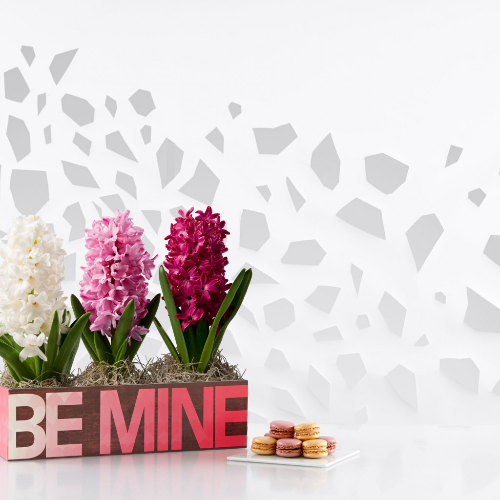 Flowers, be mine, cookies wallpaper 1024x1024