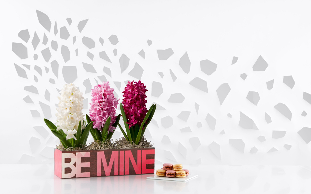 Flowers, be mine, cookies wallpaper 1280x800