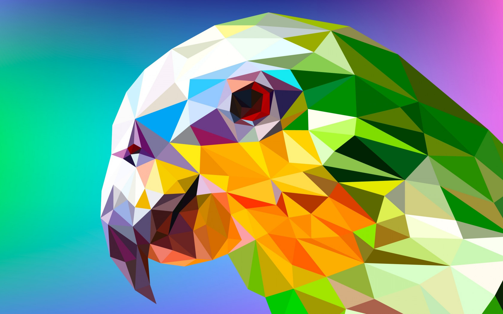 Low Poly Illustration: Parrot wallpaper 1680x1050