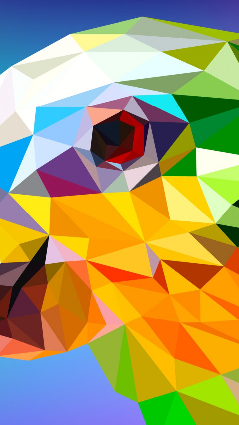 Low Poly Illustration: Parrot | 480x854 wallpaper