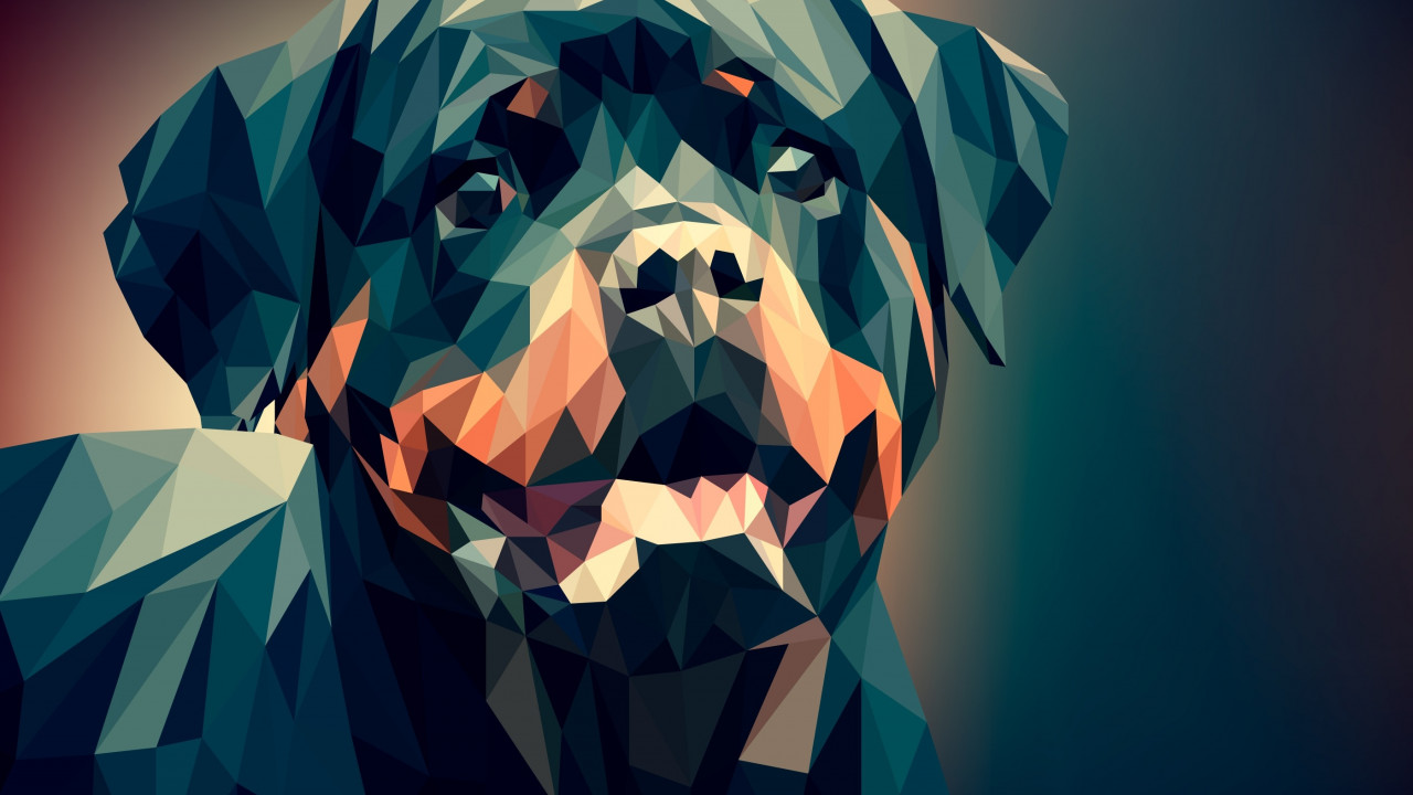 Low Poly Illustration: Rottweiler wallpaper 1280x720