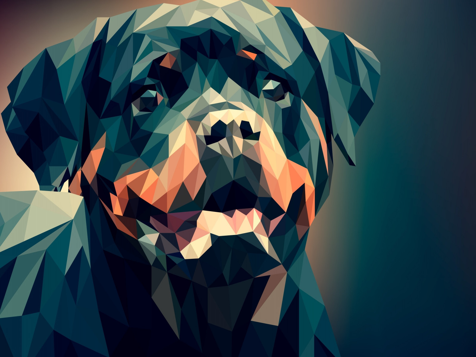 Low Poly Illustration: Rottweiler wallpaper 1600x1200