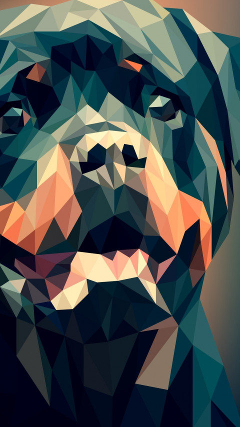 Low Poly Illustration: Rottweiler wallpaper 480x854