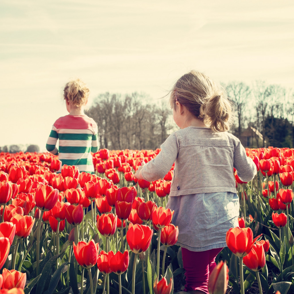 Children in the land with tulips | 1024x1024 wallpaper