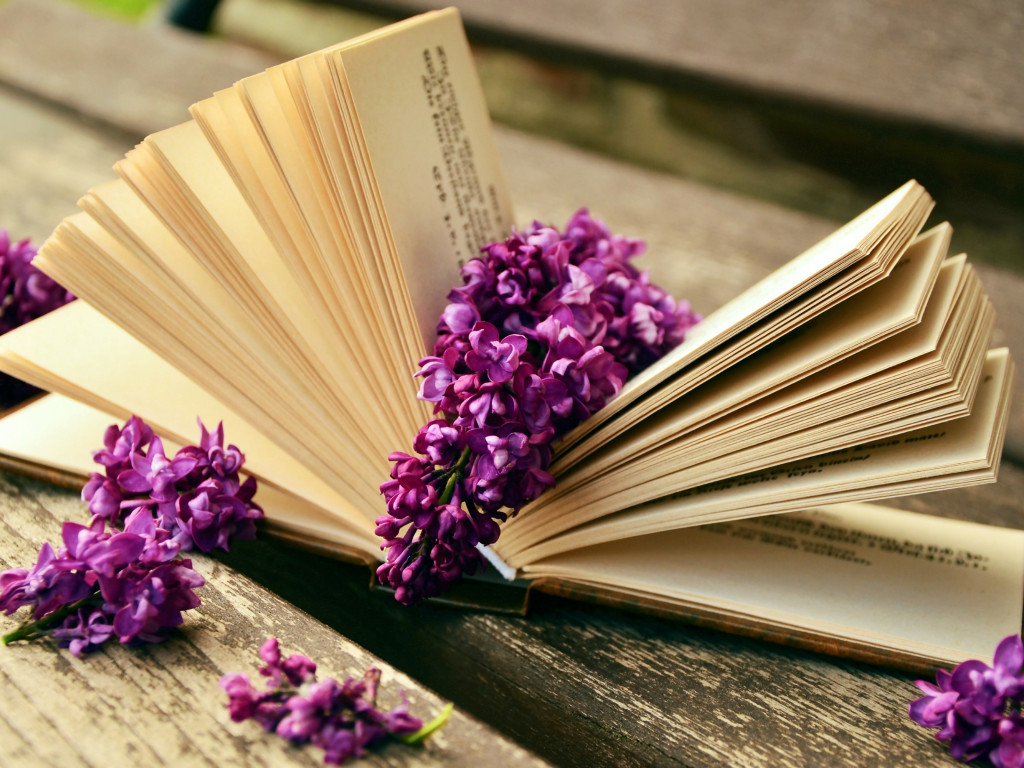 Lilac flowers and a good book wallpaper 1024x768