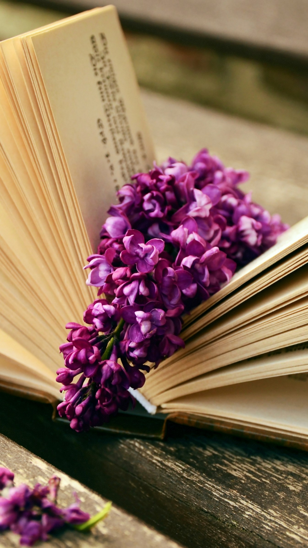 Lilac flowers and a good book wallpaper 1080x1920
