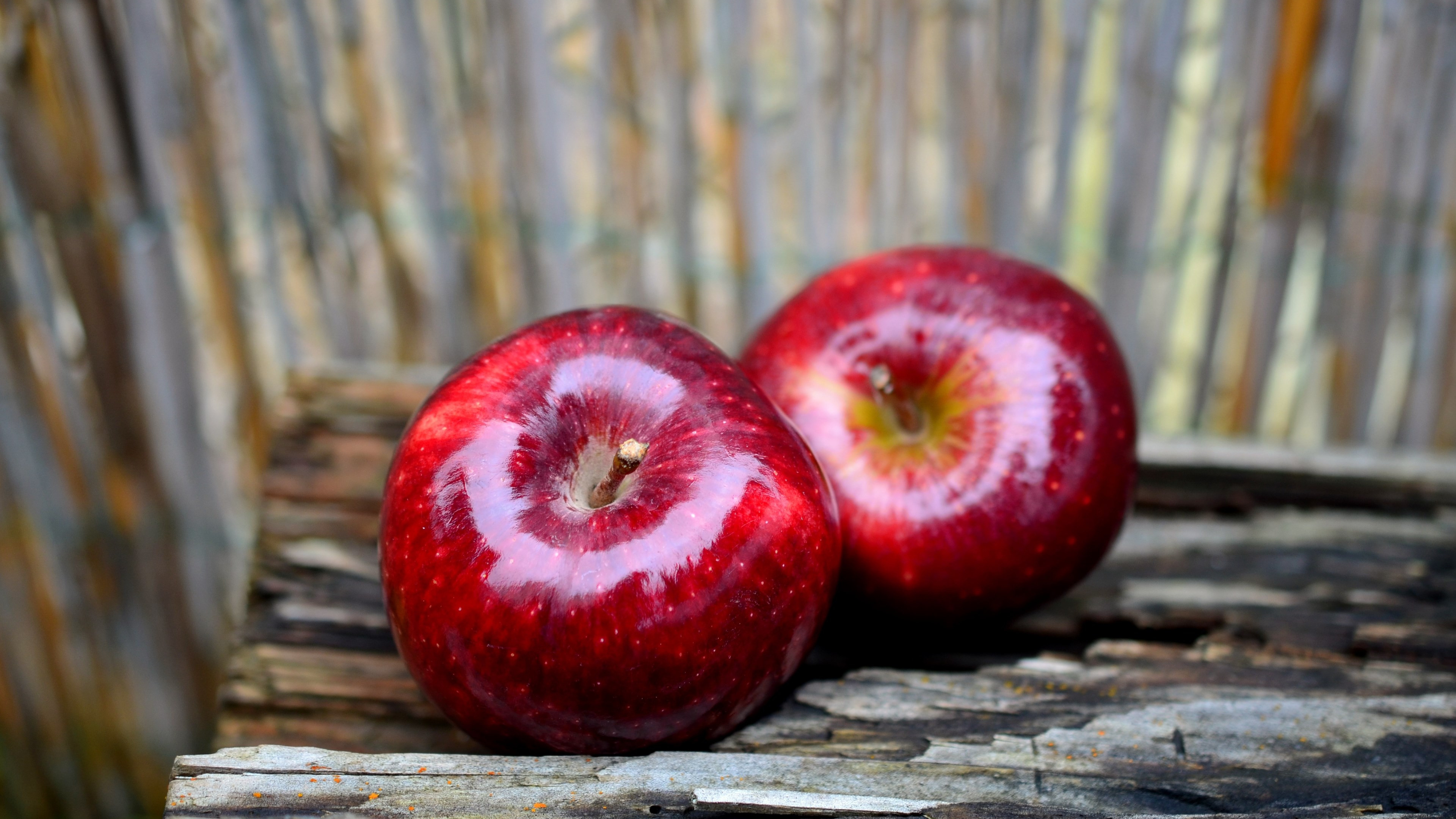 Delicious red apples wallpaper 3840x2160