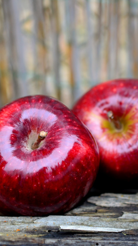 Delicious red apples wallpaper 480x854