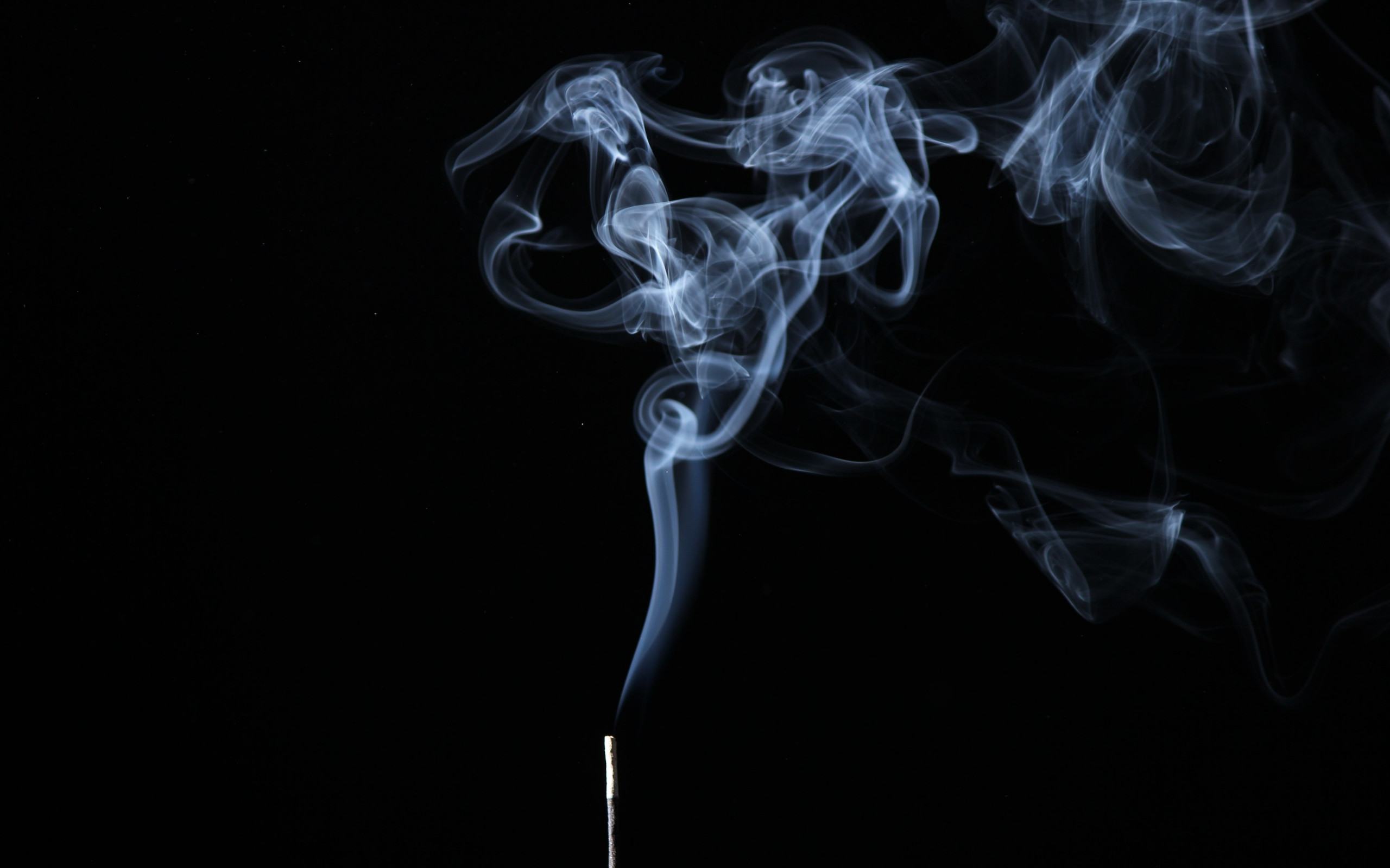 Smoke on black background wallpaper 2560x1600