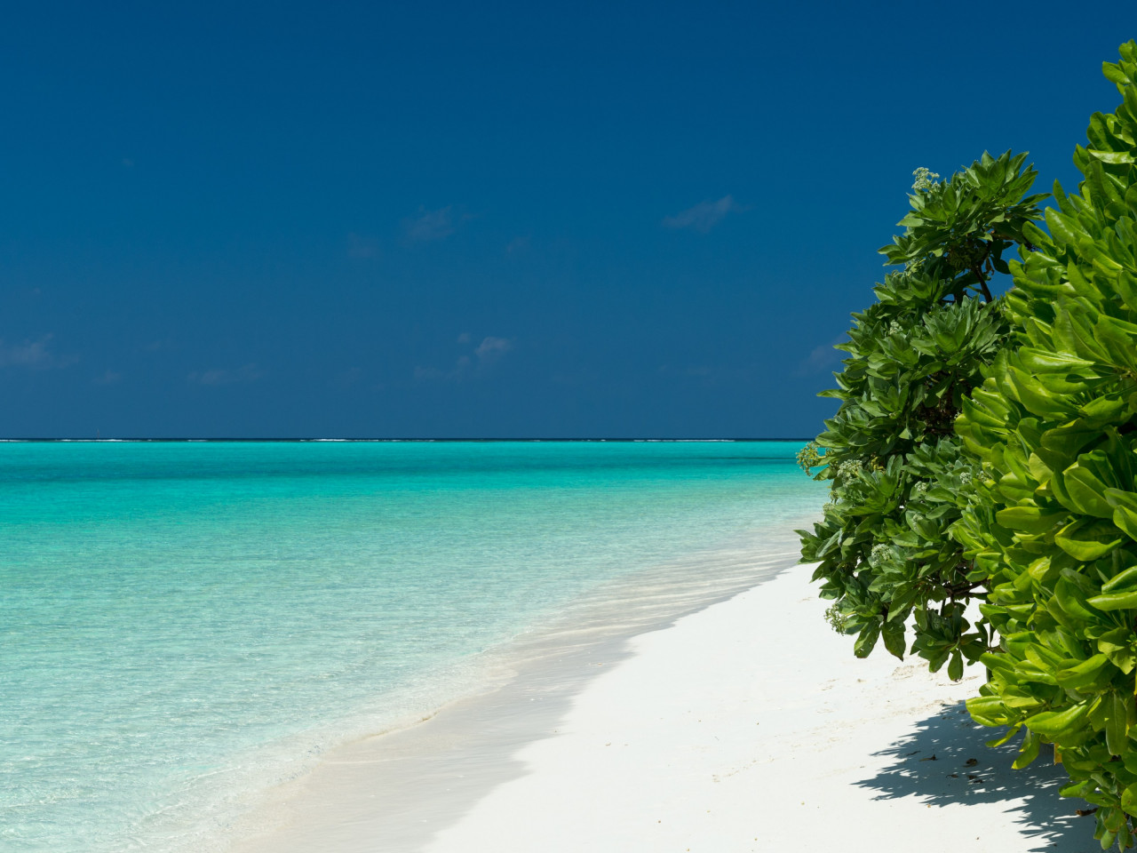 Turquoise waters of Maldives wallpaper 1280x960