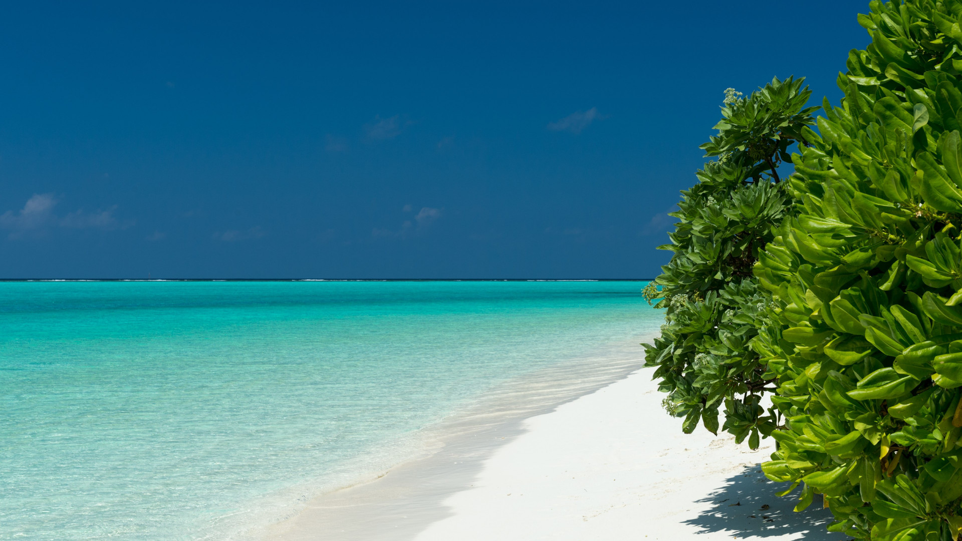 Turquoise waters of Maldives wallpaper 1920x1080