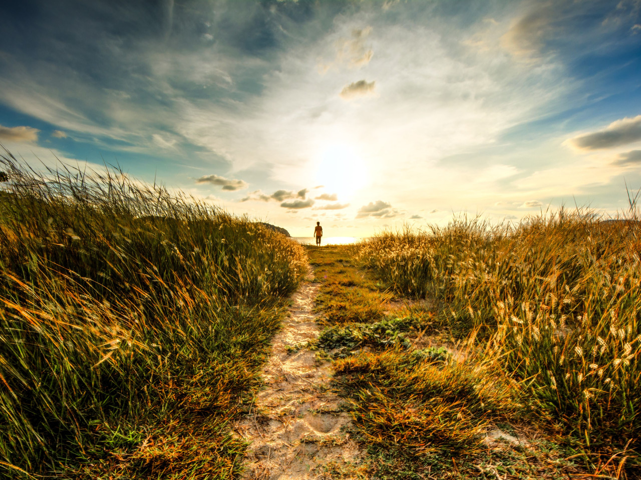 Walk to sunset on the nature path wallpaper 1280x960