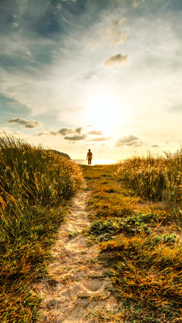 Walk to sunset on the nature path wallpaper 750x1334