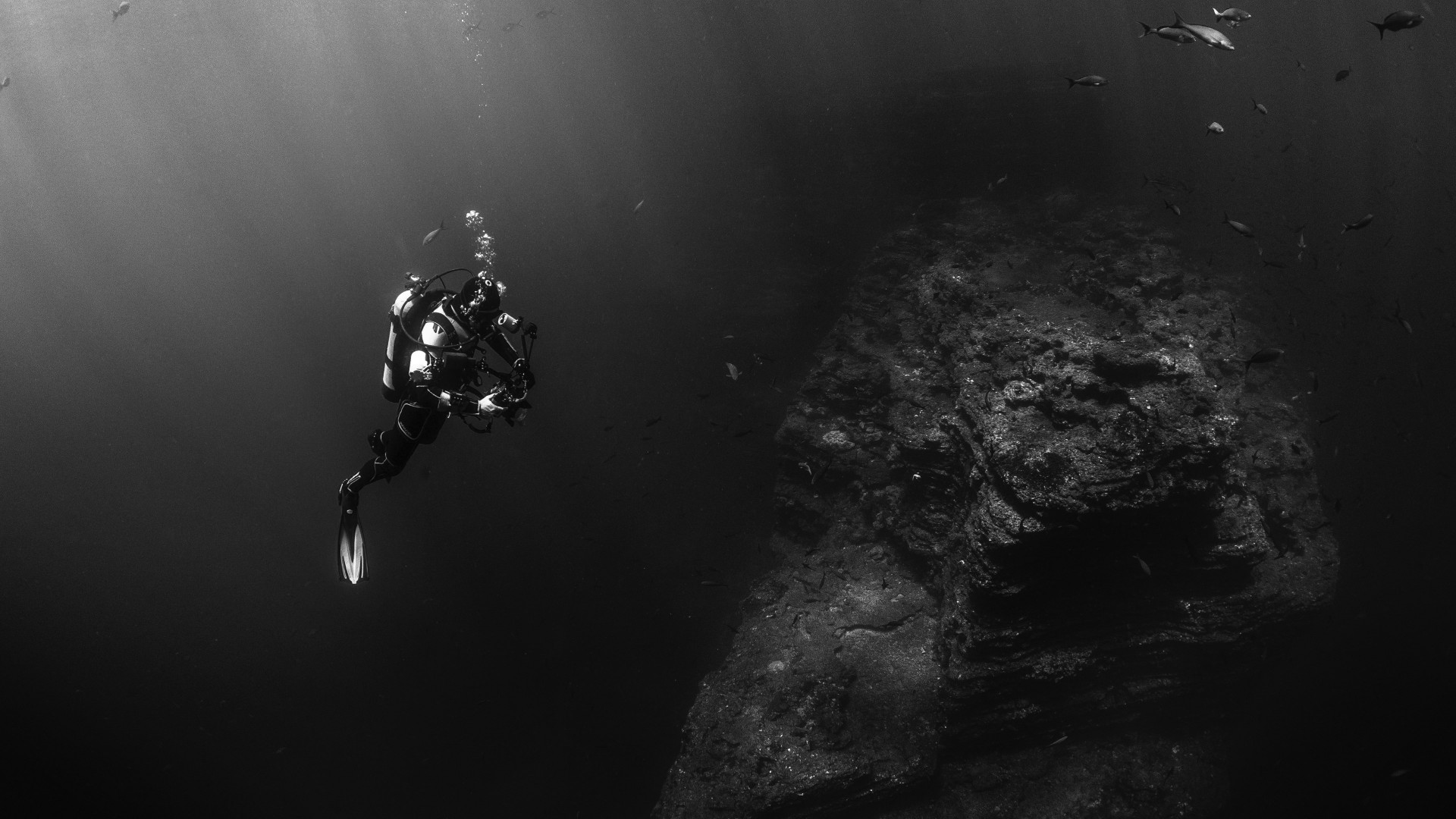 Diver in the Pacific Ocean wallpaper 1920x1080
