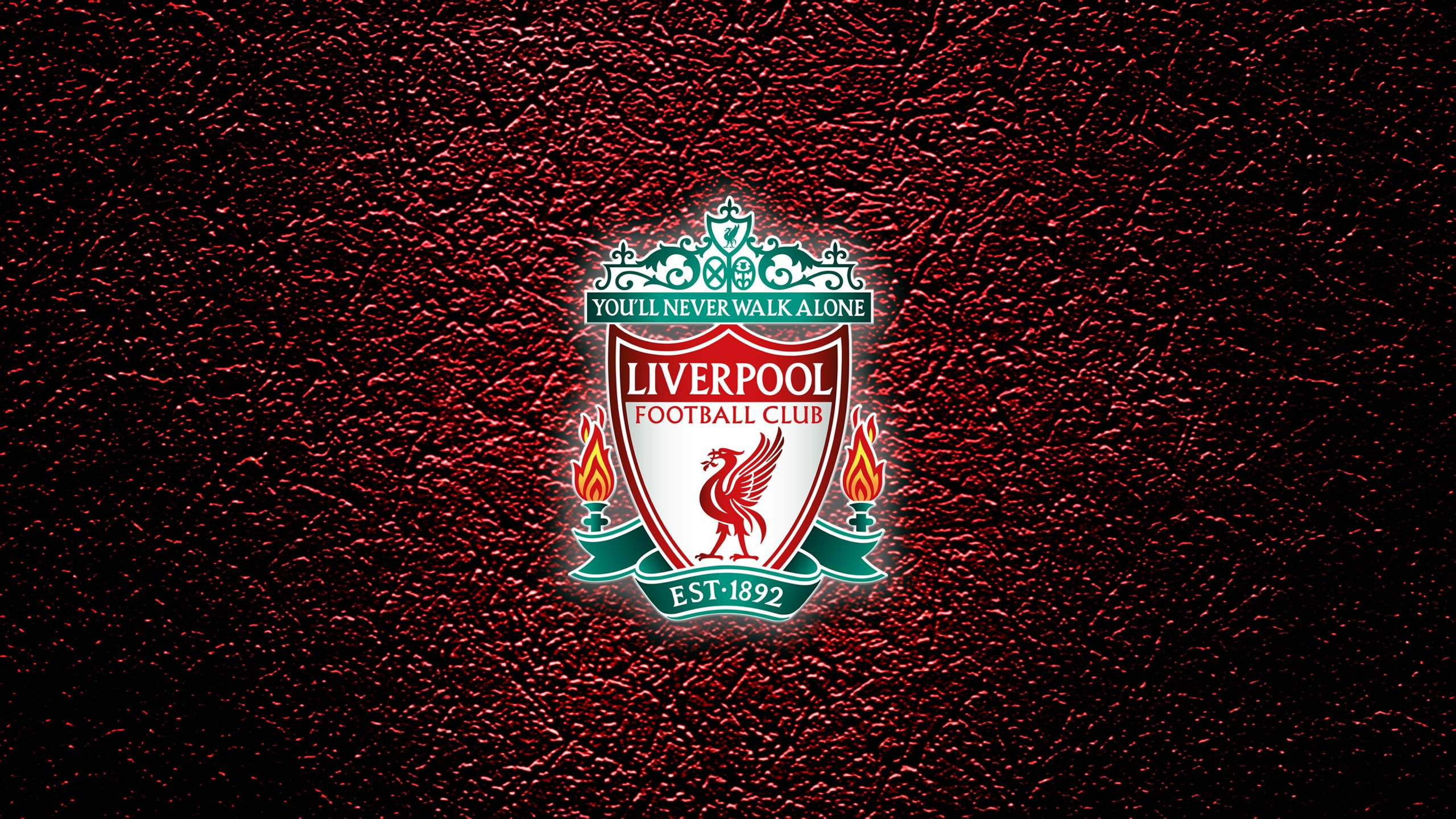 Liverpool - You'll never walk alone wallpaper 2560x1440
