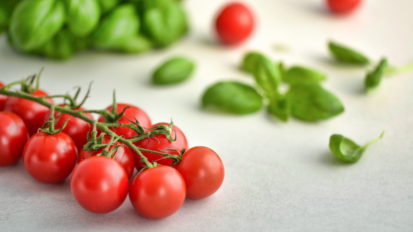 Tomatoes and basil wallpaper 1366x768