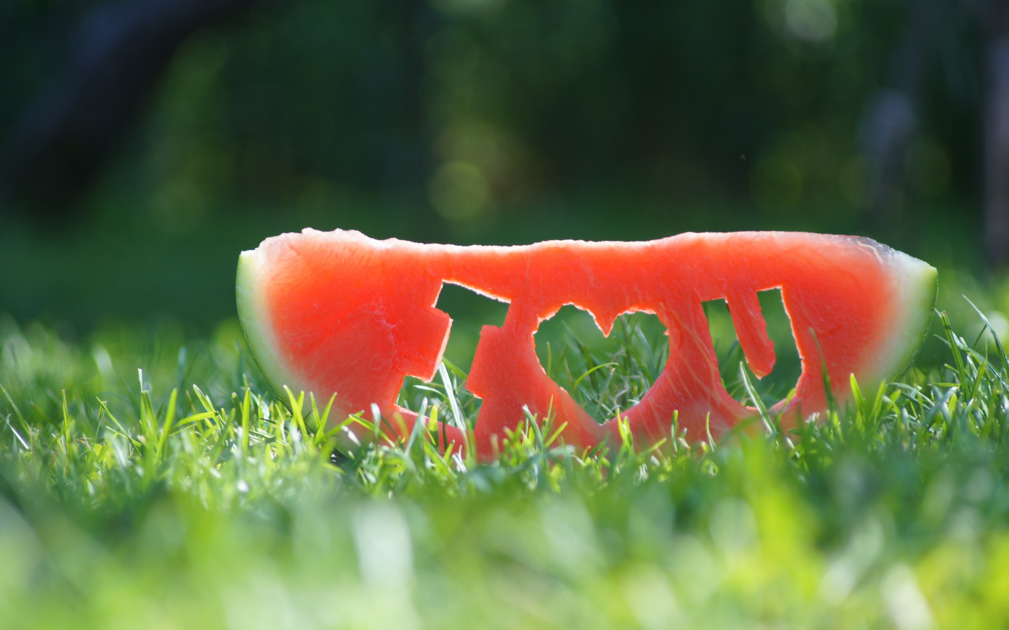 I love you through a watermelon slice wallpaper 1440x900