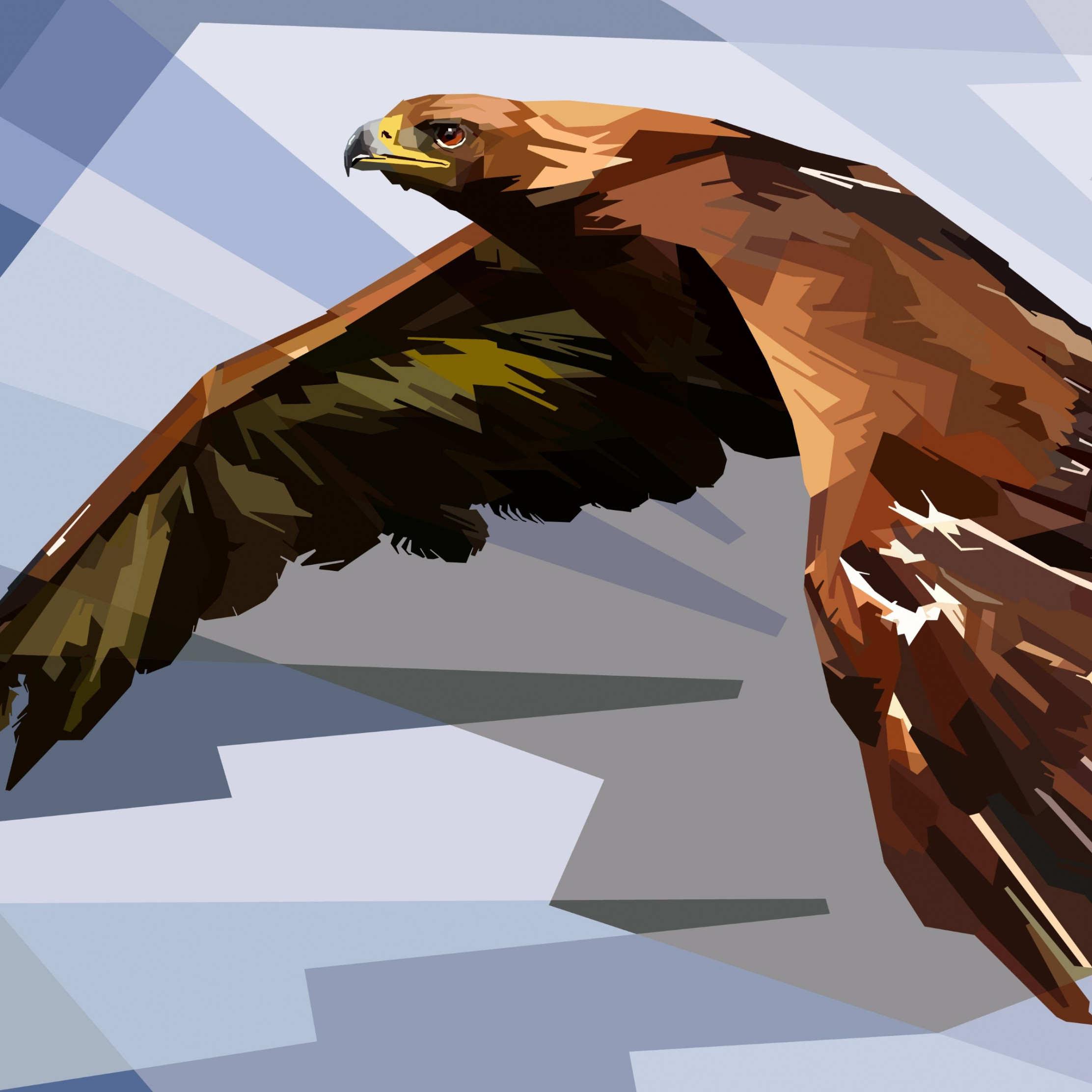Digital drawing of an eagle wallpaper 2224x2224