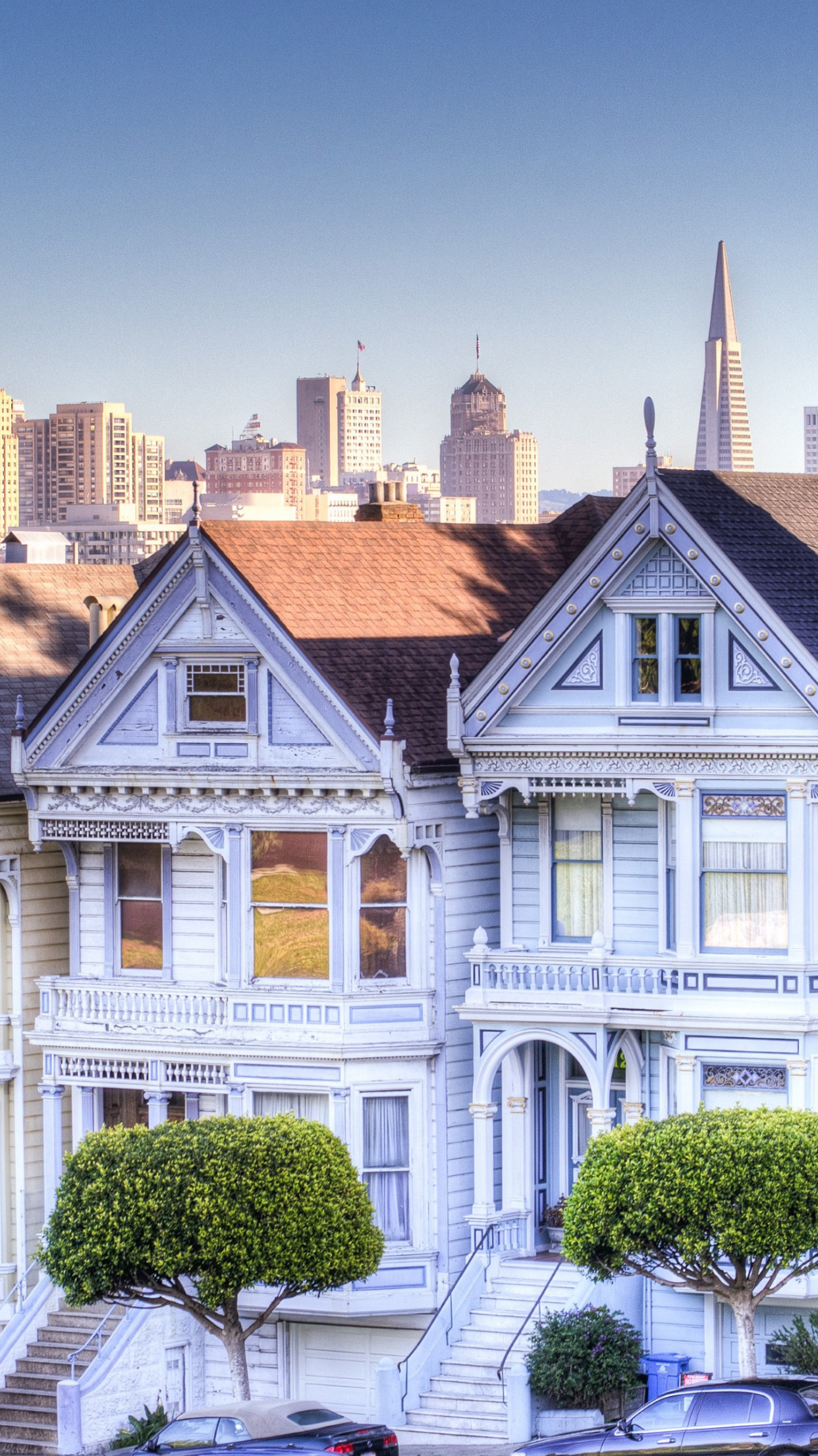 Painted Ladies wallpaper 1242x2208