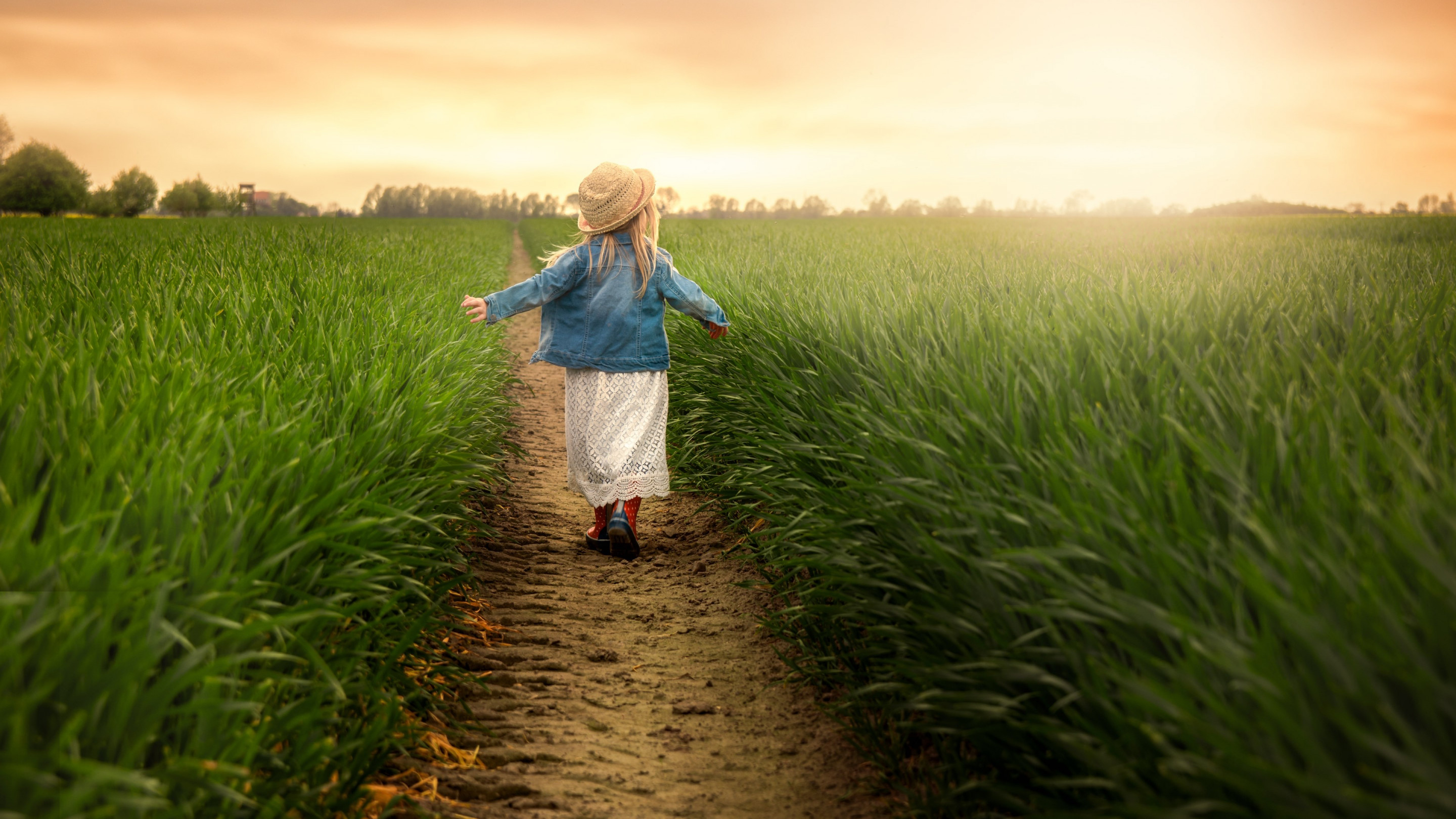 Child in the green field at sunset wallpaper 2880x1620