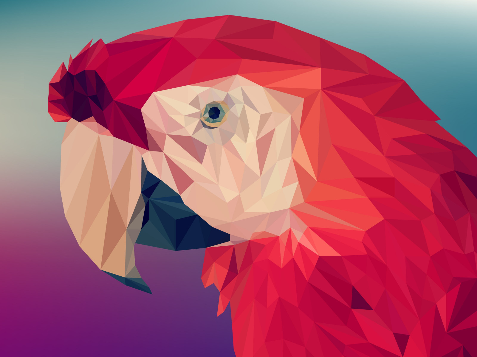 Low poly art: Red parrot wallpaper 1600x1200