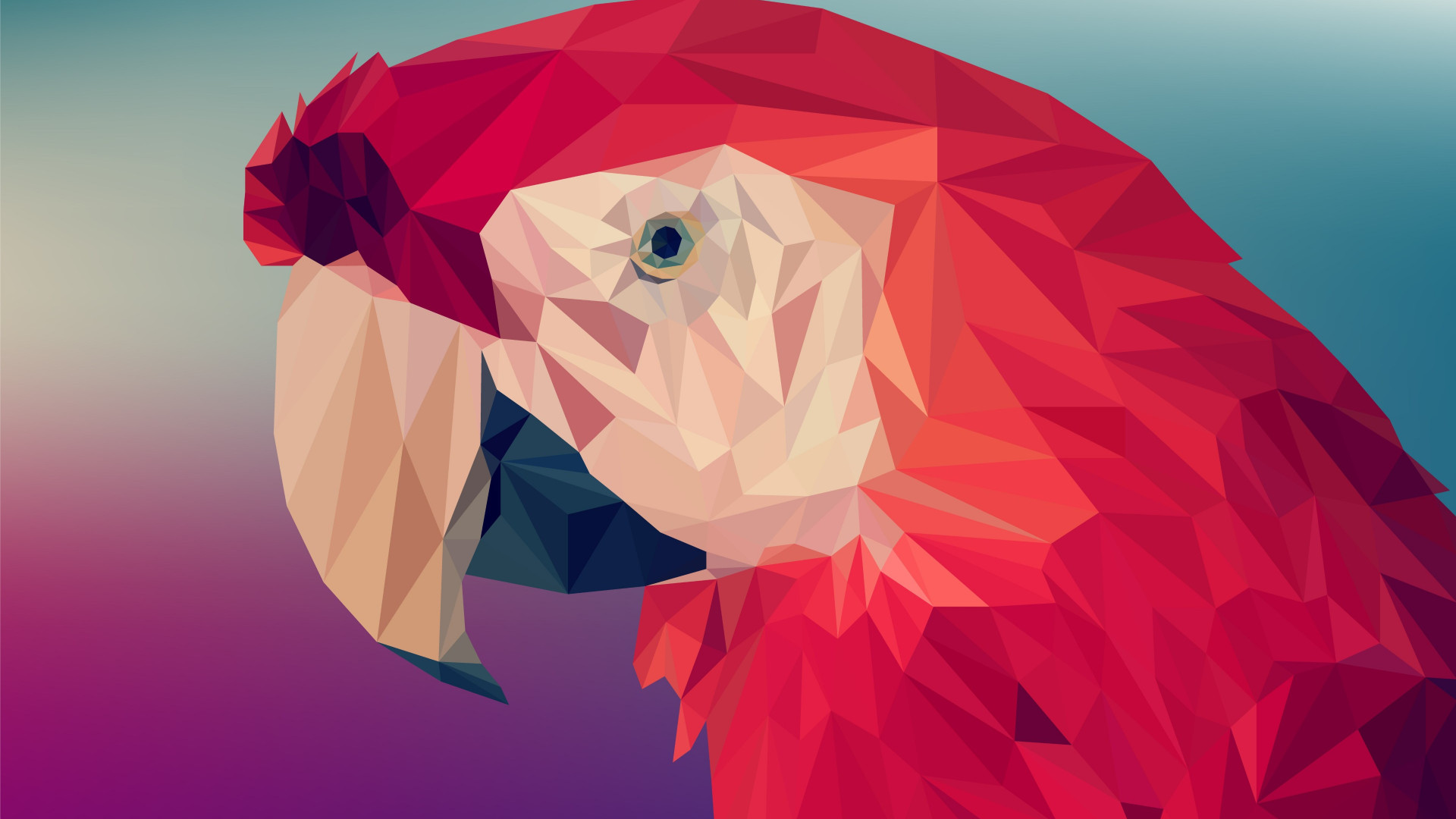 Low poly art: Red parrot wallpaper 1920x1080