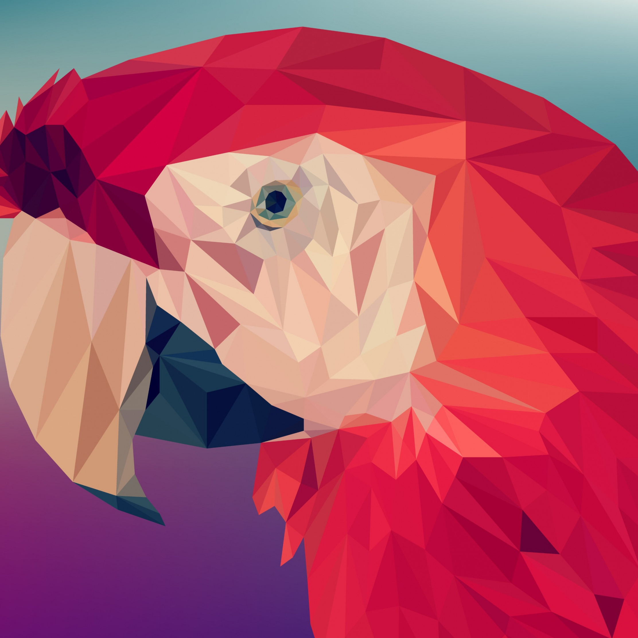 Low poly art: Red parrot | 2224x2224 wallpaper