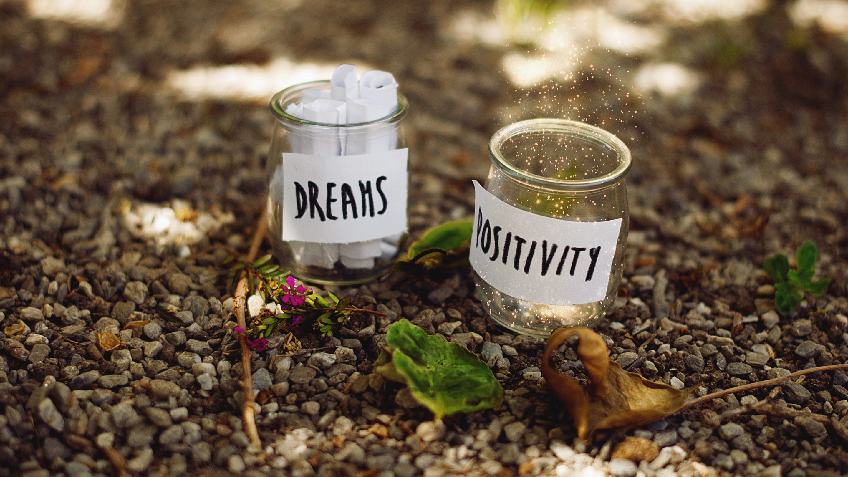 Dreams and Positivity wallpaper 2880x1620
