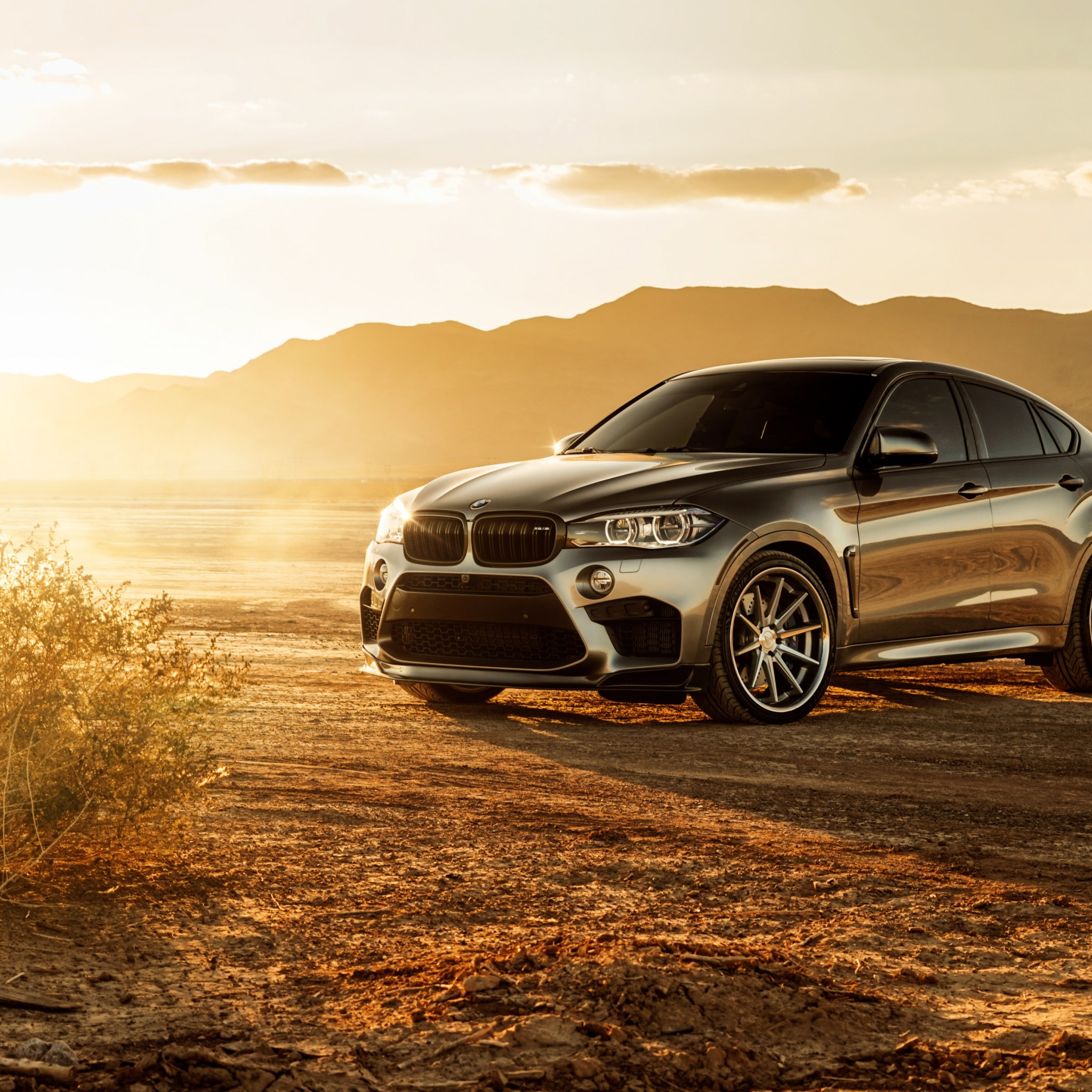 Ferrada BMW X6M Glory | 2048x2048 wallpaper