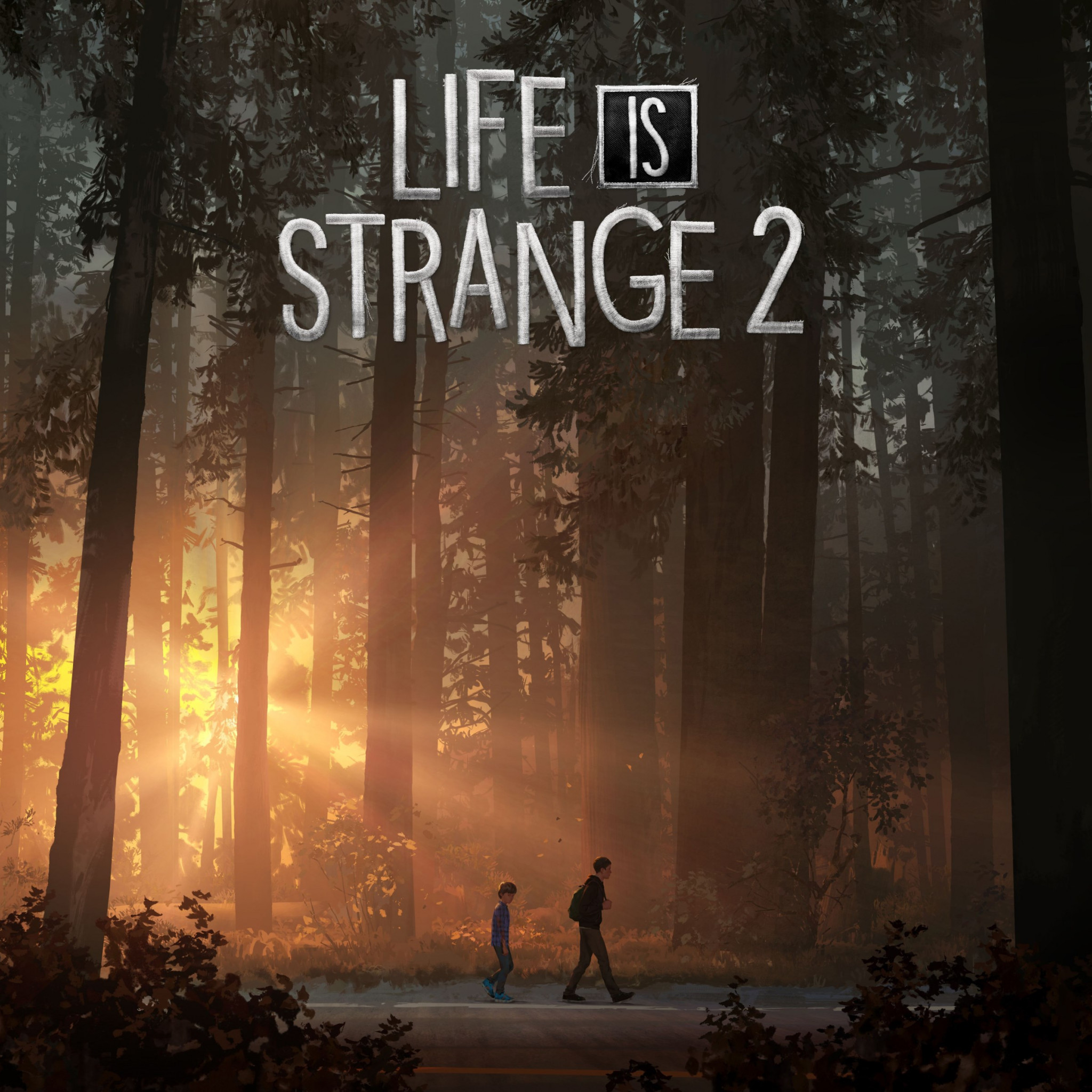 Life Is Strange 2 wallpaper 2048x2048