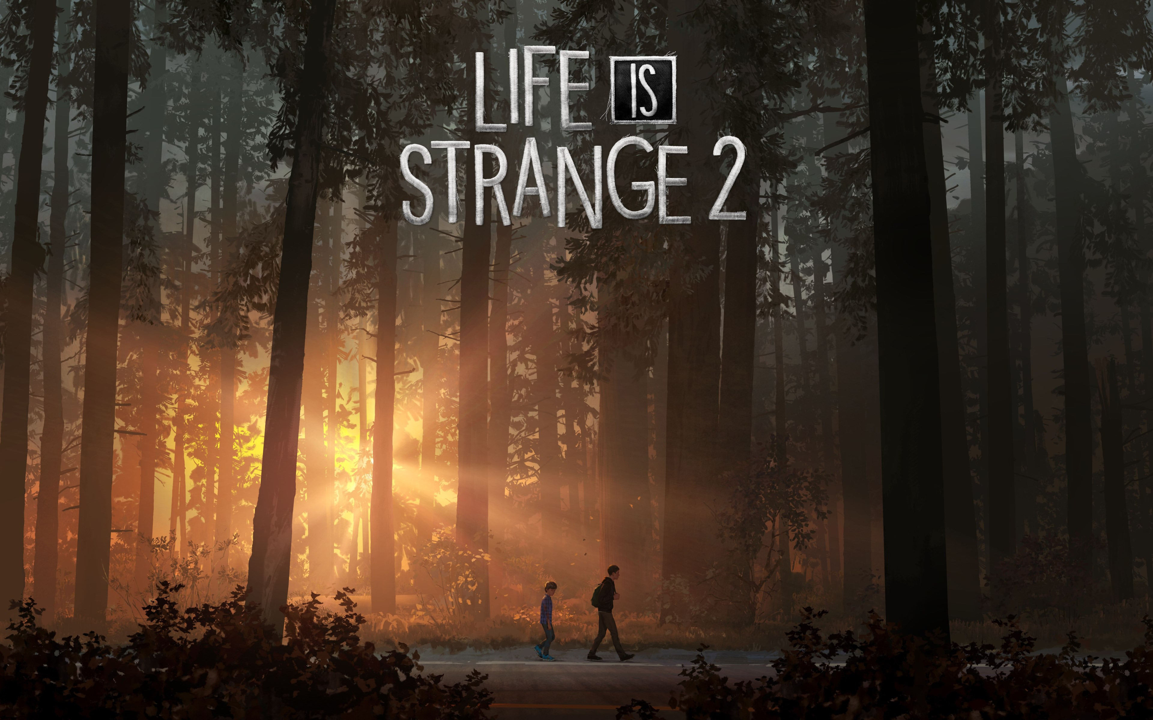 Life Is Strange 2 wallpaper 3840x2400