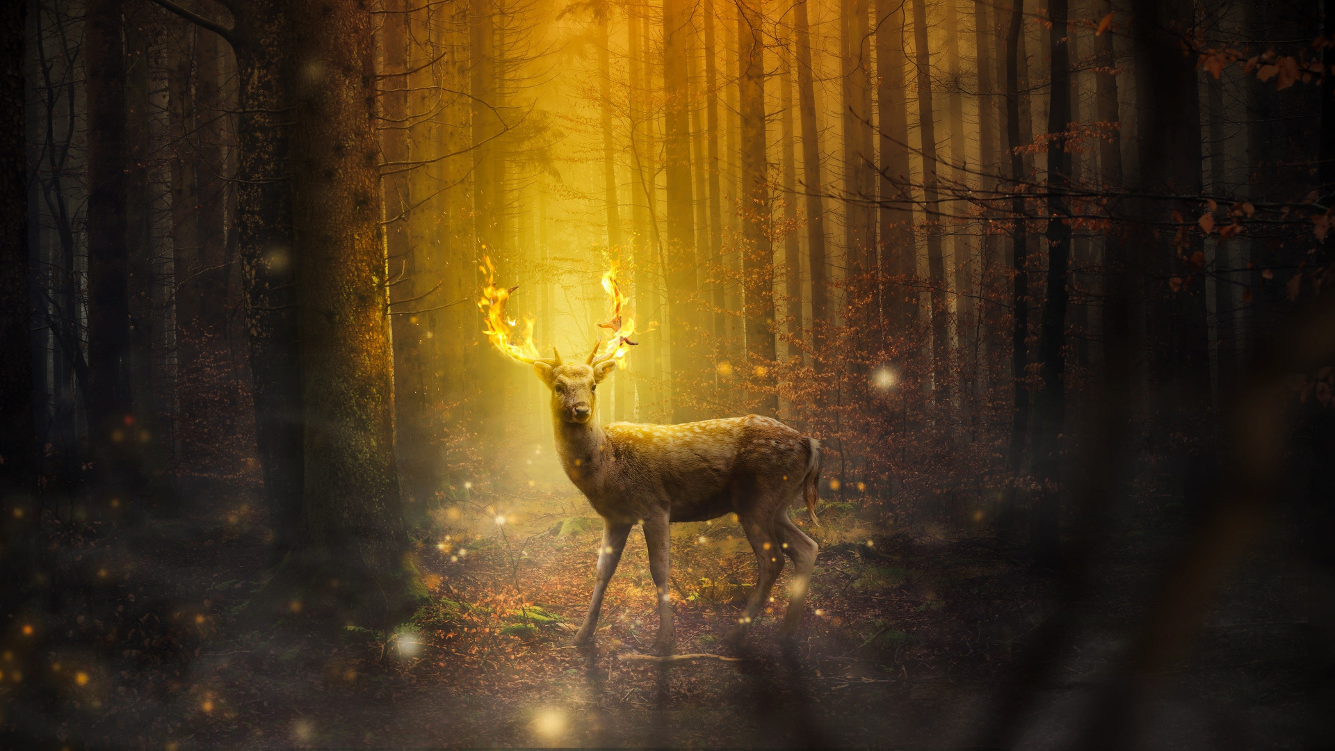 Fantasy, stag, horns, flames wallpaper 1920x1080