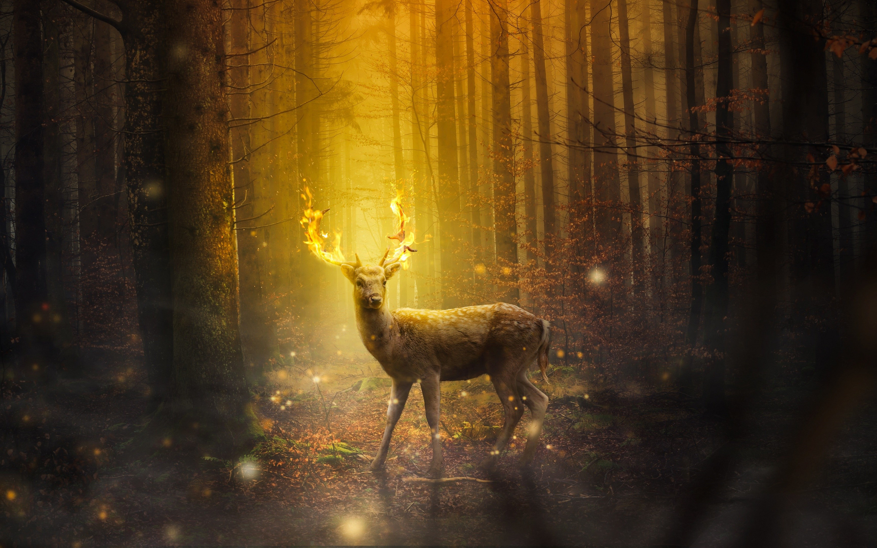 Fantasy, stag, horns, flames wallpaper 2880x1800
