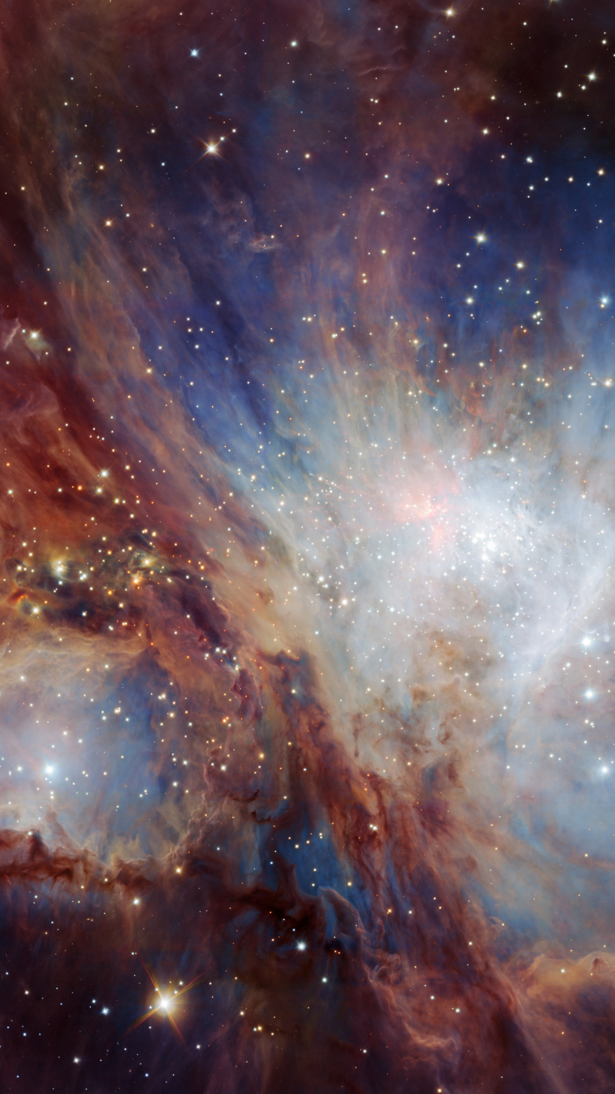 Infrared view of the Orion Nebula wallpaper 1242x2208