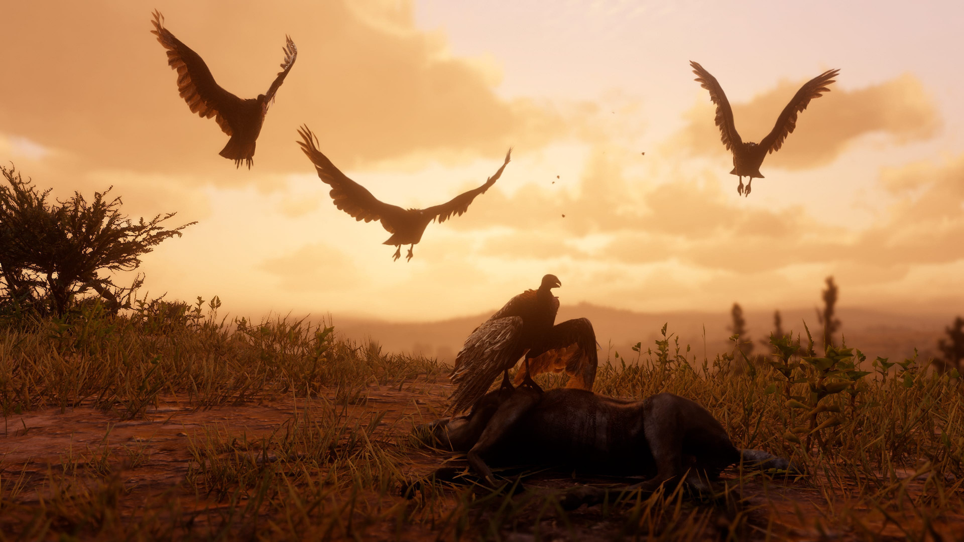 Download Wallpaper Red Dead Redemption 2 1920x1080