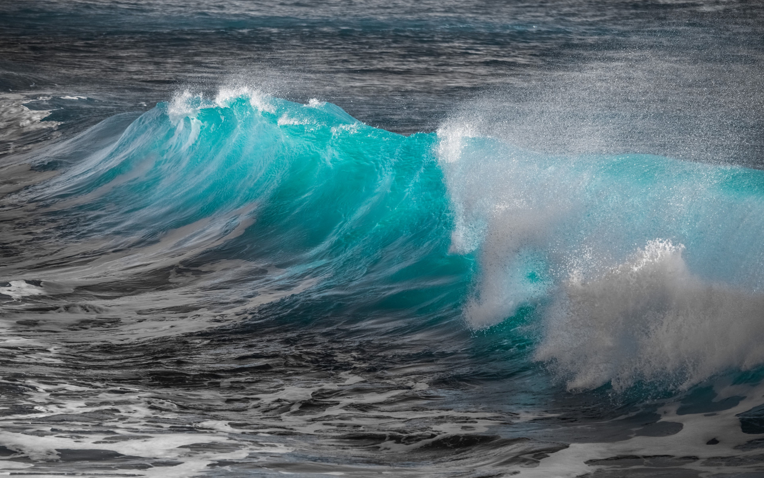 download wallpaper  turquoise sea wave 2560x1600
